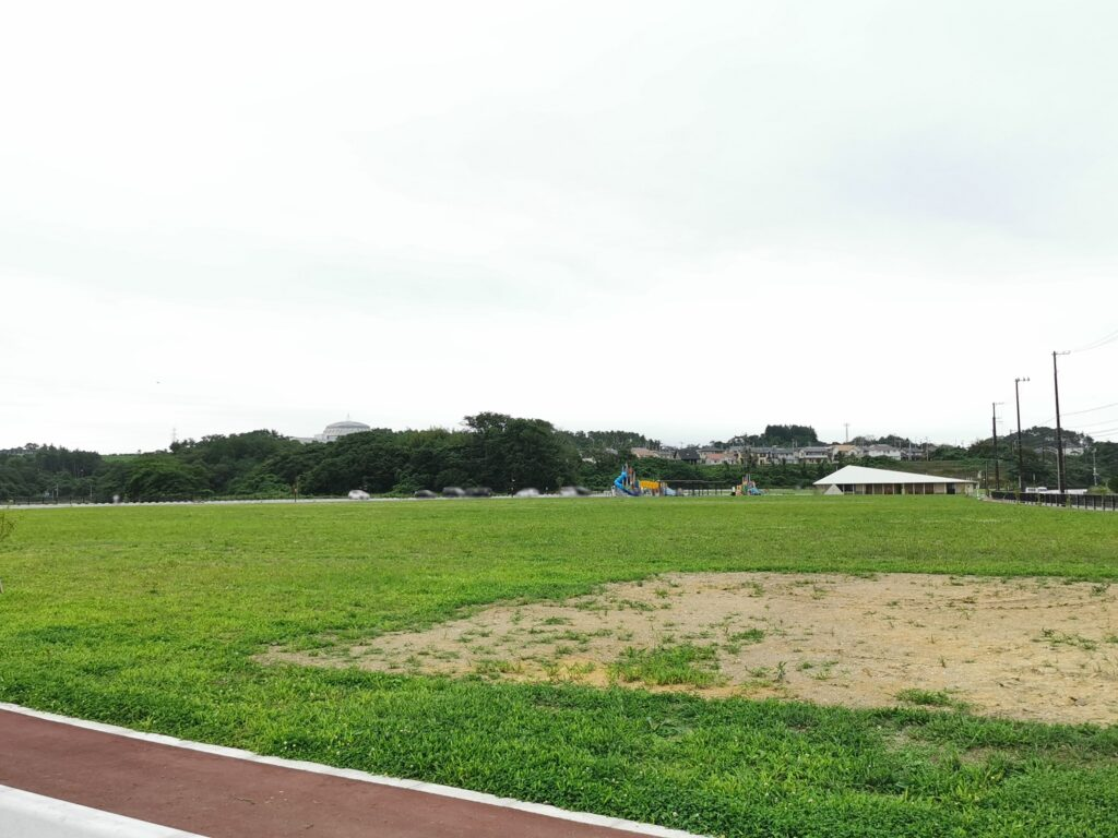 ながすか多目的広場の芝生